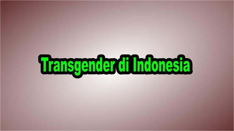 Stereotip negatf publik masih melekat pada kaum transgender karena banyak masyarakat yang menilai para transgender telah melanggar norma, diantaranya norma sosial maupun norma agama yang mereka anut dengan mengubah jenis kelamin mereka yang berarti telah melanggar kodrat Tuhan. Walaupun di Indonesia transgender masih menjadi hal yang tabu, di beberapa negara seperti Thailand kaum transgender mendapatkan perlakuan yang setara dengan manusia-manusia lainnya hingga ada beberapa area khusus yang dihuni oleh transgender. Namun di Indonesia para kaum transgender sangat minoritas sehingga kaum transgender masih mendapat perlakuan tidak mengenakan dari publik.