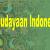 Kebudayaan-Indonesia